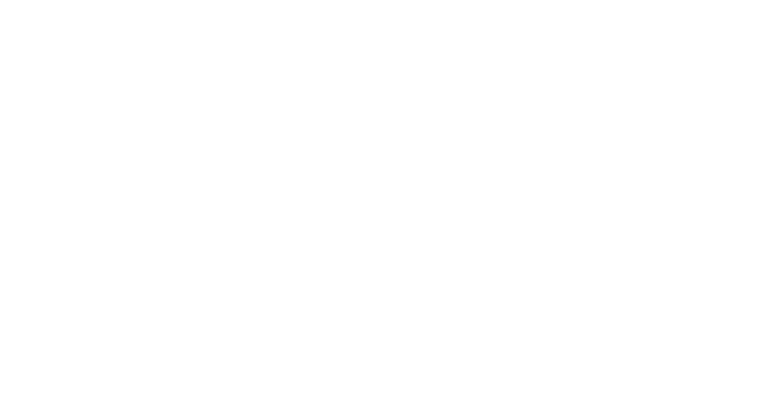 Forte Marketing